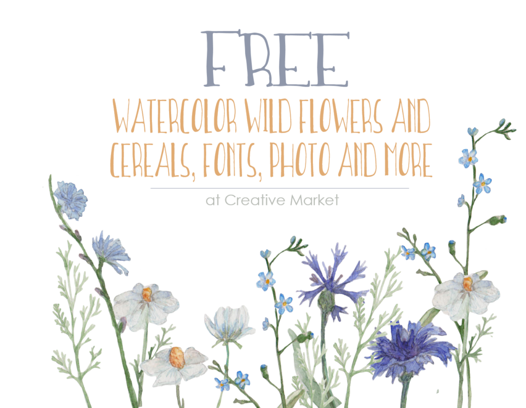 Free Watercolor wildflower