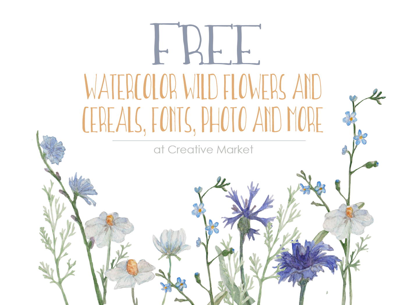 Free Watercolor Wildflower and Cereals