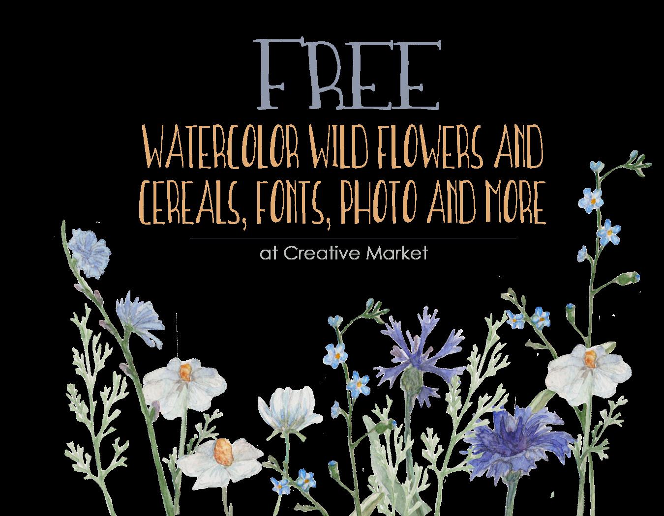 Free Watercolor Wildflower