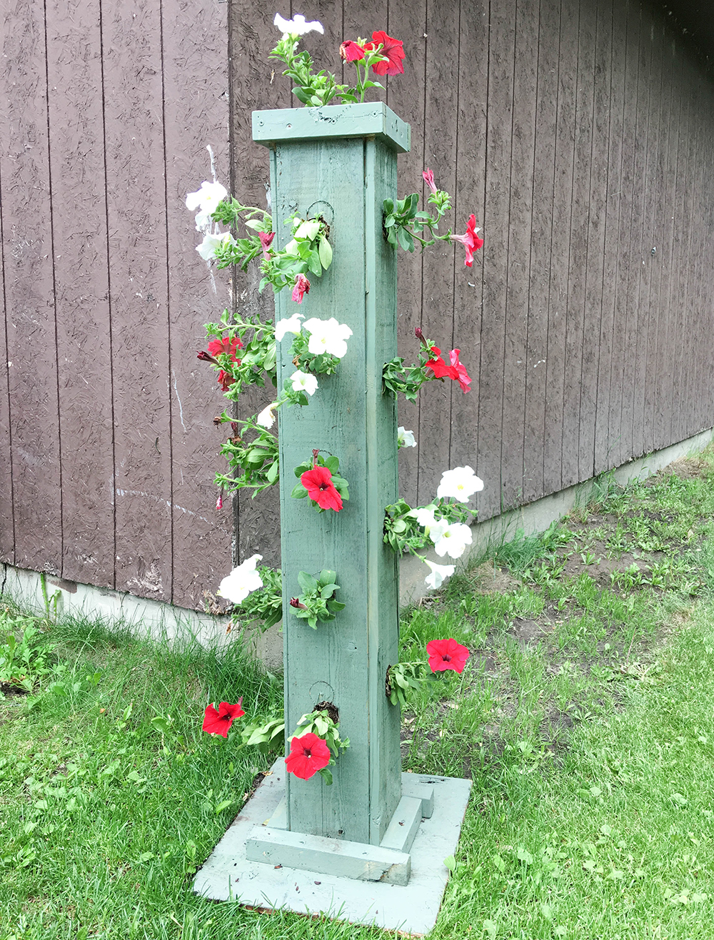vertical garden for petunia