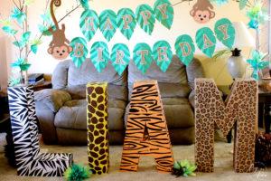 Liam's Safari Themed Party