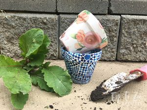 Terra Cotta Pots Makeover